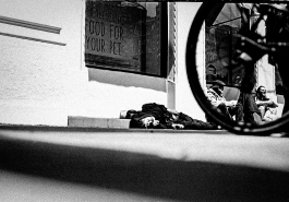 zev fagin, photograph 87
