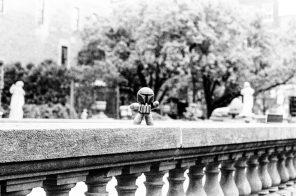 zev fagin, photograph 88
