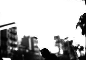 zev fagin, photograph 70