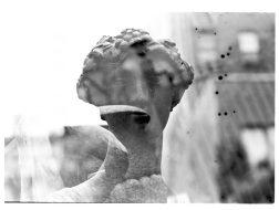 zev fagin, photograph 64