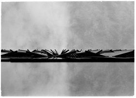 zev fagin, photograph 36