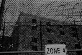 zev fagin, photograph 39