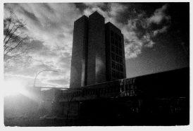 zev fagin, photograph 3