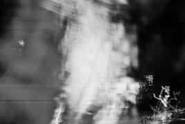zev fagin, photograph 25