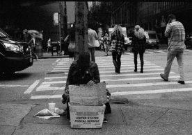 zev fagin, photograph 8