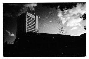 zev fagin, photograph 5