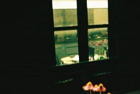 zev fagin, photograph 100