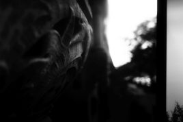 zev fagin, photograph 103